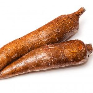 Maniok Wurzel