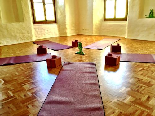 hatha yoga kurs und Kurse in Freienbach