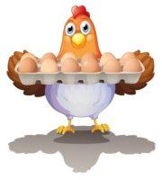 Eier: eins pro Tag oder zwei pro Woche?