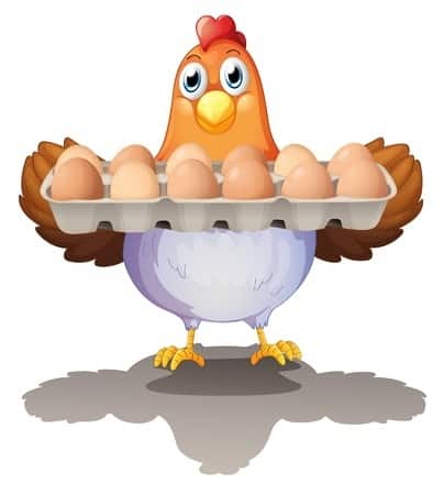 huhn haelt eier cholesterin gesund