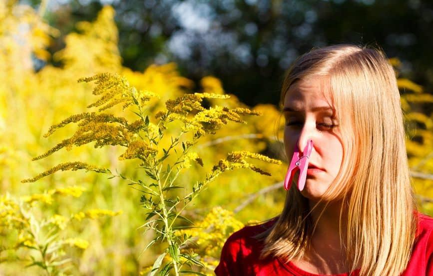 Allergie Heuschnupfen Asthma Darmgesundheit